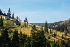 Landschaft von den grünen Gebirgshügeln bedeckt durch Wald mit kleinen Häusern lizenzfreies stockbild