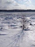 Landschaft von einem eisigen Fluss Lizenzfreie Stockfotos