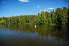 Landschaft von einem See in Finnland Stockbild