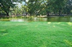 Landschaft von einem Teich im Park Stockbild
