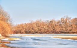 Landschaft von Eisfluß und -wald Stockfotos