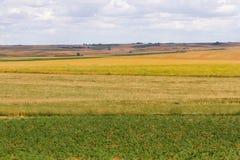 Landschaft von Feldern mit verschiedenen Ernten und Brache Stockfotos