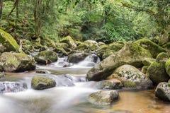 Landschaft von Fluss Plym Lizenzfreies Stockfoto