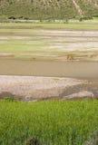 Landschaft von Fluss und von Bauernhof Lizenzfreies Stockbild