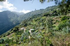 Landschaft von GalipÃ-¡ n, nahe Caracas stockfotografie
