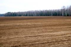 Landschaft von gegraben herauf Feld, brünieren gegrabenes oben Land mit Betten, Furchen für das Pflügen, Säen des Kornes vor dem  Stockbilder
