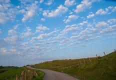 Landschaft von grünen eingezäunten Wiesen, von Straße und von blauem Himmel mit Wolken lizenzfreie stockfotografie