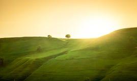 Landschaft von grünen Hügeln bei Sonnenaufgang Stockfotos