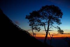 Landschaft von Indonesien-Berg Stockfotografie