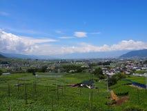 Landschaft von Kofu-Becken in Yamanashi, Japan Stockfotografie