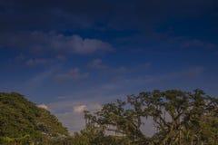 Landschaft von Kolumbien, Valle Del Cauca stockfotos