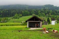 Landschaft von ländlichem Österreich Lizenzfreies Stockfoto