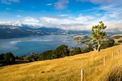 Landschaft von Neuseeland Lizenzfreie Stockfotografie