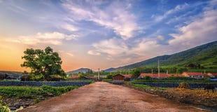 Landschaft von Nord-China unter der untergehenden Sonne Lizenzfreies Stockbild