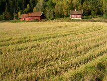 Landschaft von Norwegen.   lizenzfreie stockbilder