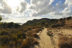 Landschaft von sandigen Dünen mit grüner Flora stockbild