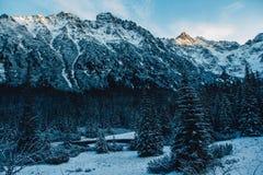 Landschaft von Schnee-mit einer Kappe bedeckten Spitzen der felsigen Berge im sonnigen Wetter Das Konzept der Natur und der Reise lizenzfreie stockfotos