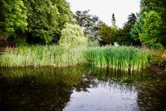 Landschaft von Schottland in England Stockfoto
