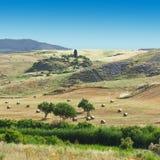 Landschaft von Sizilien Stockfoto