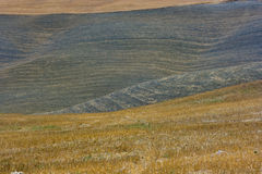 Landschaft von Toskana Stockbilder