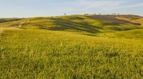 Landschaft von Toskana, Italien stockbilder
