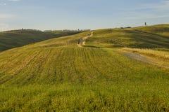Landschaft von Toskana, Italien lizenzfreie stockbilder