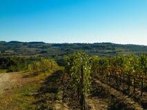 Landschaft von Toskana, Italien lizenzfreies stockfoto