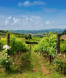 Landschaft von Toskana, Italien Lizenzfreies Stockbild