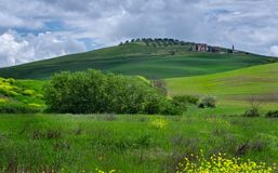 Landschaft von Toskana um Pienza lizenzfreie stockfotografie