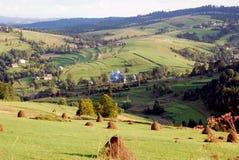Landschaft von ukrainischen grünen Ebenen Lizenzfreies Stockbild
