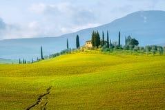 Landschaft von Val-d'Orcia Provinz am Frühling Toskana, Italien Stockbild