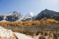 Landschaft von Yading in Daocheng-Grafschaft, Sichuan von China Lizenzfreies Stockfoto