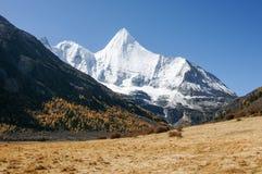 Landschaft von Yading in Daocheng-Grafschaft, Sichuan von China Lizenzfreies Stockbild