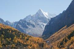 Landschaft von Yading in Daocheng-Grafschaft, Sichuan von China Stockbilder