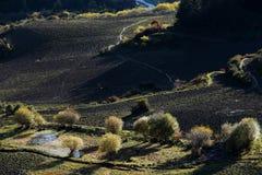 Landschaft von Zhagana in Gannan, China-` s Gansu Stockbilder