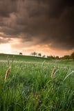 Landschaft vor Sturm Stockbild