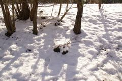 Landschaft winterlich - Frankreich Stockfotografie
