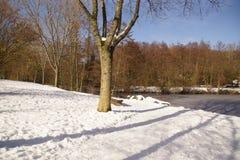 Landschaft winterlich - Landschaft wurde mit Schnee im Wald umfasst Lizenzfreie Stockfotos
