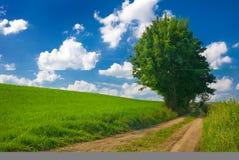 Landschaftansicht. Stockbilder