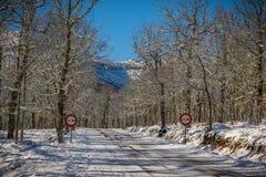 Landschaften schneiten im Berg Stockbilder