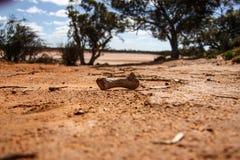 Landschaften von Australien lizenzfreie stockbilder