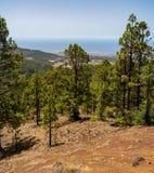 Landschaften von Teneriffa Kanarische Inseln spanien lizenzfreie stockbilder