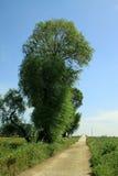 Landschaftlandschaft in Nordchina Lizenzfreie Stockfotografie