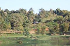 Landschaftlich gestalteter formaler Garten Stockbilder