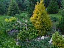 Landschaftlich gestalteter Garten Lizenzfreies Stockbild