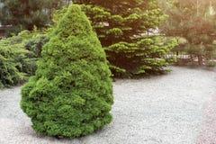 Landschaftlich verschönerter formaler Garten Methode in der Stadt Dekoratives Parkgartendesign Lizenzfreie Stockbilder