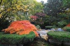 Landschaftlich verschönerter japanischer Garten Stockbilder
