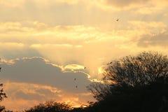 Landschaftliche Schönheit am Abend Lizenzfreie Stockfotos