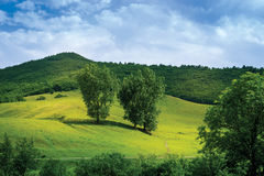 Landschafts-Berge Lizenzfreies Stockbild