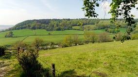 Landschafts-im Frühjahr Landschaft in England Stockfotografie
